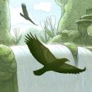 Waterfall Hawks