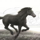 Taryn Horse